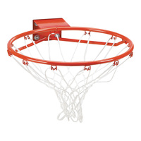 Lifetime Slam-It Basketball Rim and Net