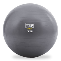 EVERLAST Exercise Ball