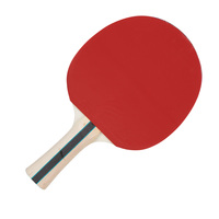 EastPoint Sports 3.0 Table Tennis Paddle