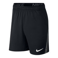 Nike Men's Dri-FIT 5.0 Training Shorts
