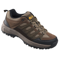 Denali Birch Men's Hiking Boots