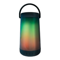 LitezAll Spectrum Color-Changing LED Wireless Bluetooth Speaker